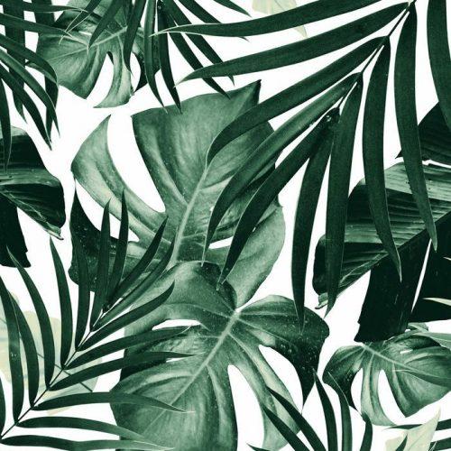 salledebain-jungle-nature-decoration-decorer-mon-interieur-renover-decorateur-montpellier-jeremydugas-papierpeintjungle-leroymerlin-montpellier-toulouse